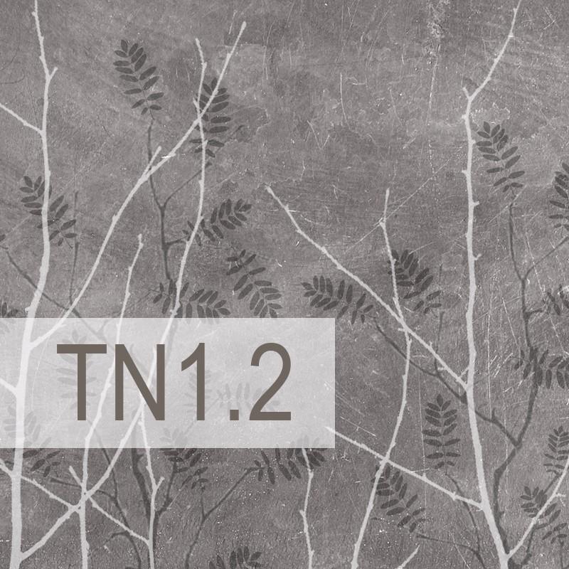Cedre - TN1.2