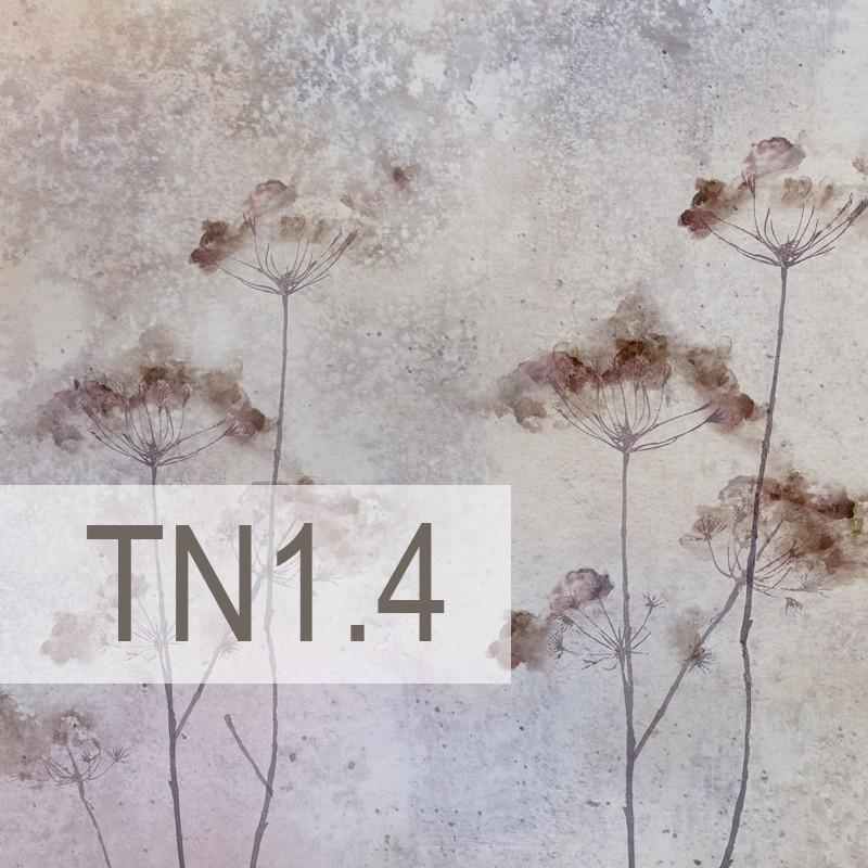 Cedre - TN1.4