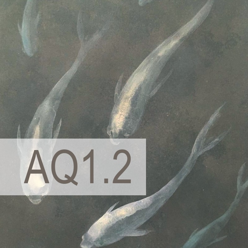 Cedre - AQ1.2