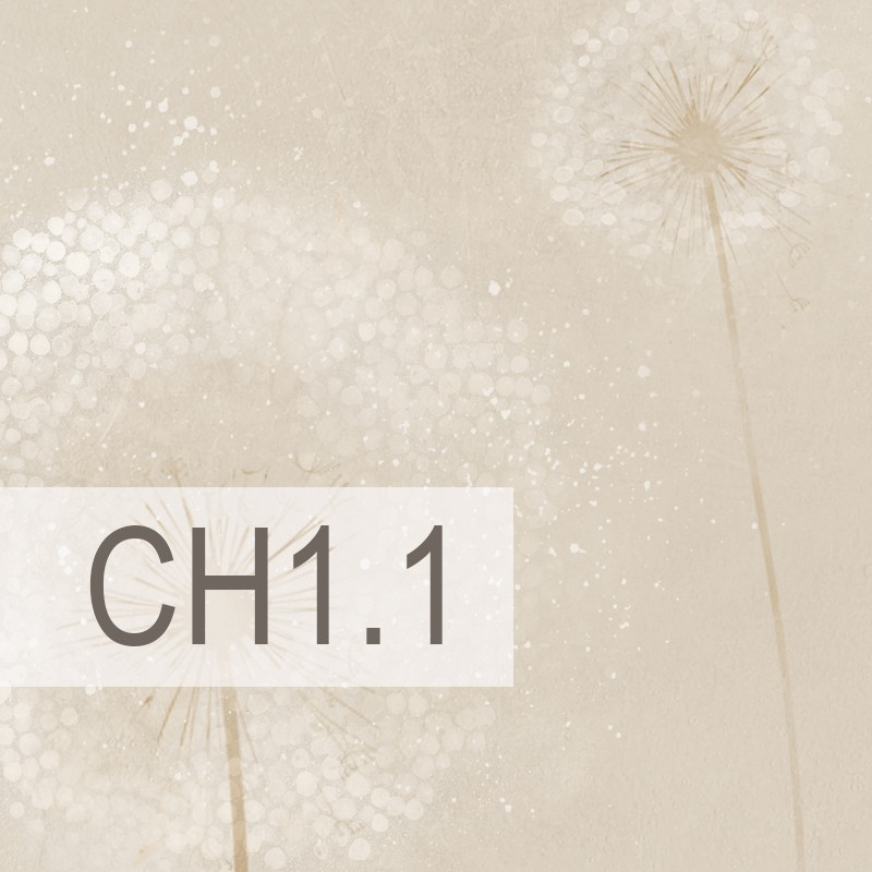 Cedre - CH1.1