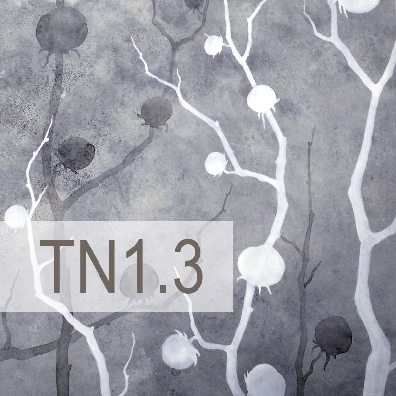 Cedre - TN1.3